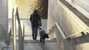 גברת עם כלב נחיה עולה במעלה המדרגות מהים